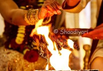 Pandit | Shaadiyari